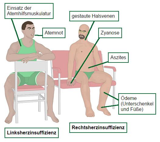 pqsg.de - das Altenpflegemagazin im Internet / Online-Magazin für ...
